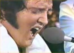 Elvis Last Concert